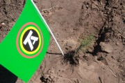 Сажаем лес при поддержке ТОАЗа.