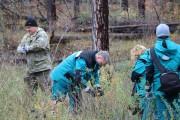 СИБУР сажает лес!