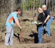 Посадим 22 гектара леса!