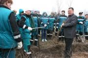 28 апреля СИБУР сажает наш лес!